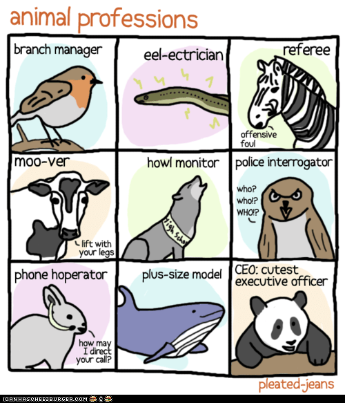 animals,birds,bunnies,cows,eels,jobs,owls,panda,professions,puns,rabbits,whales,wolves,zebras