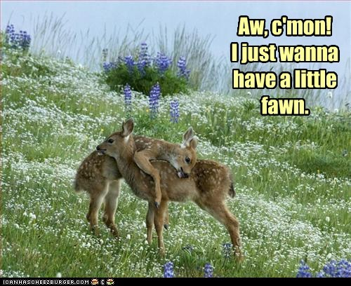 come on,deer,fawn,fun,pickup line