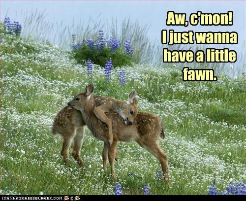 come on deer fawn fun pickup line - 6300079616
