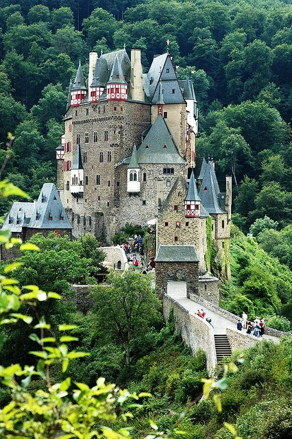 architecture bridge castle Forest Germany - 6300355840
