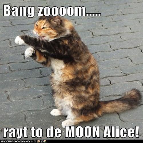 Bang Zoooom Rayt To De Moon Alice Lolcats Lol Cat Memes