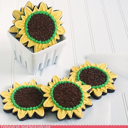 chocolate cookies epicute Flower sprinkles sunflowers - 6300987392