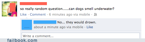 dogs,drown,drowning,lungs,smelling,underwater