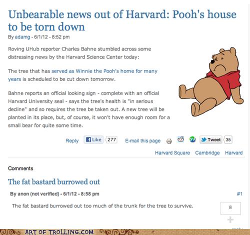 news pooh tree winnie the pooh