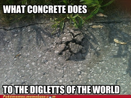 concrete,diglett,diglett wednesday,IRL