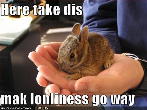 bunnies hands loneliness prescription rabbits - 630220032
