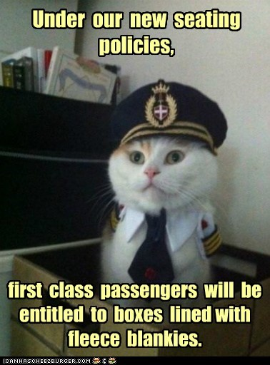 blankets,boxes,Captain Kitteh,Cats,fancy,first class,fleece blankets,flying,Memes,pilots,planes