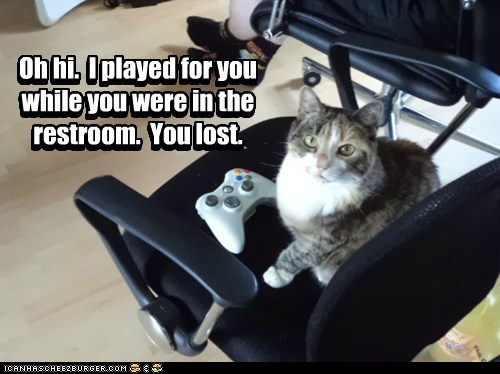 cat Cats jerk lolcats lose losing play video game video games xbox - 6302473728