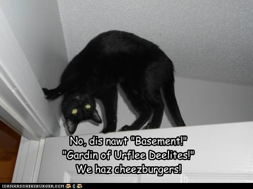 "LOLspeak Haiku No, dis nawt ""Basement!"" ""Gardin of Urflee Deelites!"" We haz cheezburgers!"
