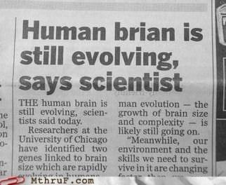 brainpower brianpower human brain human brian - 6303390720