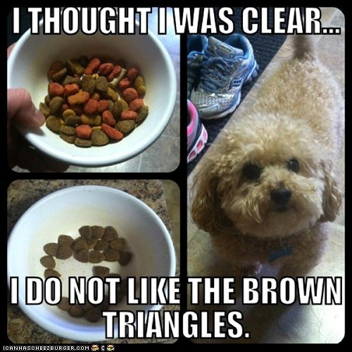 best of the week,brown triangles,dog food,dogs,food,kibbles,multipanel,picky,picky eater,triangles
