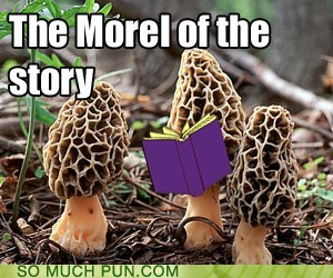book,homophone-ish,moral,morel,mushroom,Mushrooms,similar sounding,species
