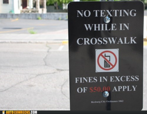 crosswalks,dangers of texting,fines,texting and walking