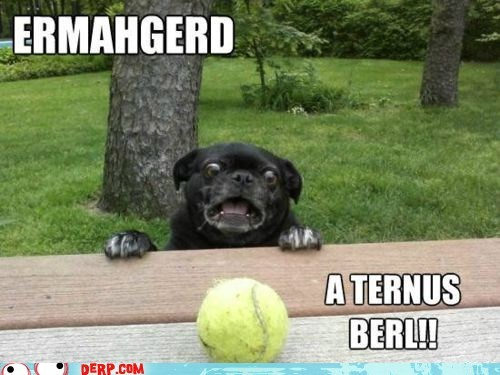 best of week derp Ermahgerd goggies tennis ball - 6304062976
