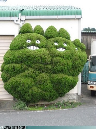 best of the week,bushes,faces,shrubs,spirits,totoro