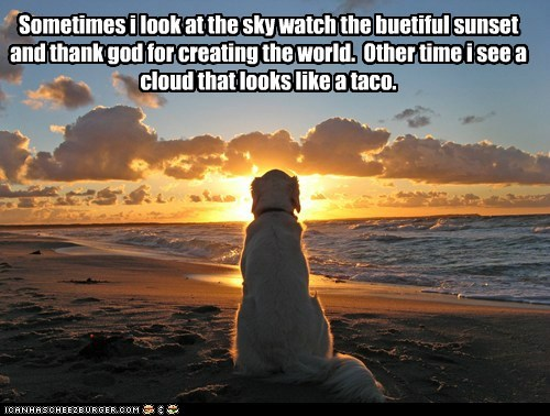 Sometimes i look at the sky watch the buetiful sunset and thank god for creating the world. Other time i see a cloud that looks like a taco.