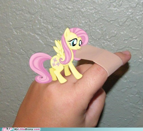 band aid cute fluttershy IRL - 6304673024