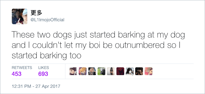 dogs tweets funny tweets dog owners - 6305029