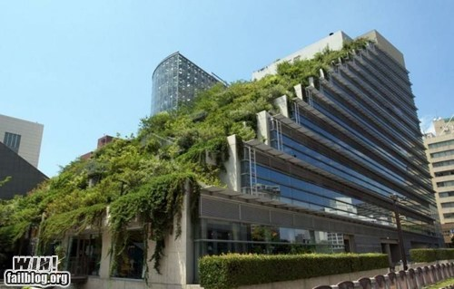 architecture building design garden - 6305078272