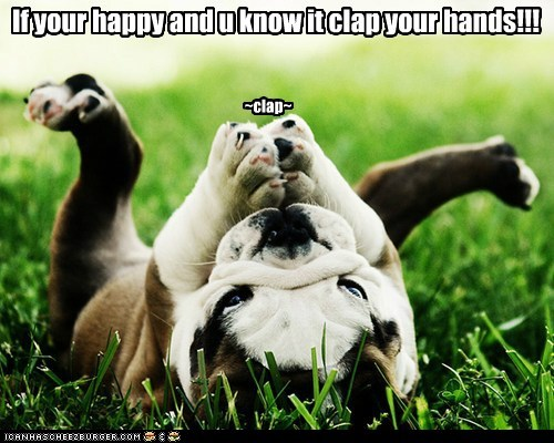 best of the week,bulldog,clap,dogs,Hall of Fame,if you're happy and you k,if-youre-happy-and-you-know-it-clap-your-hands,puppy