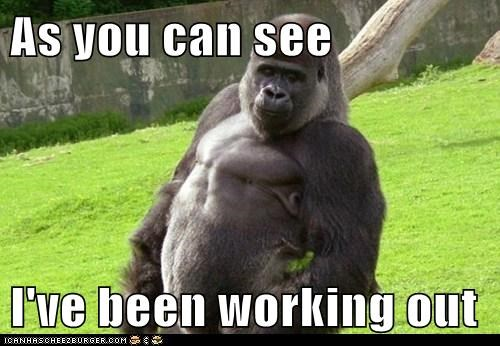 gorilla hitting on muscles working out you like