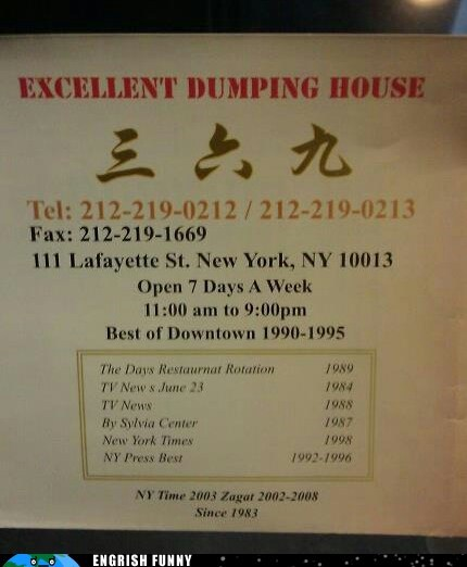 dumping ground,dumping house,dumpling,excellent dumping,new york city,nyc