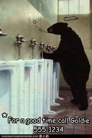 bathroom,bear,fairy tale,for a good time,goldilocks,hmmm