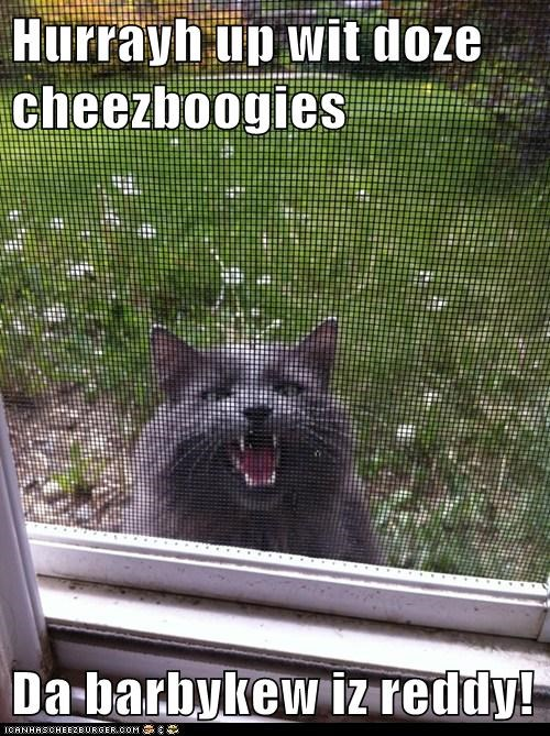 Cheezburger Image 6305425408