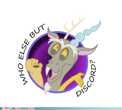cute discord rascal the internets who else