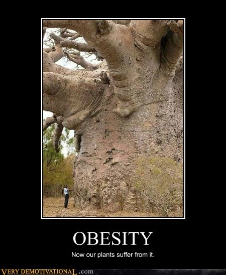 OBESITY Now our plants suffer from it.