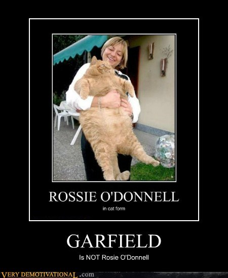 cat fat garfield hilarious - 6305841408