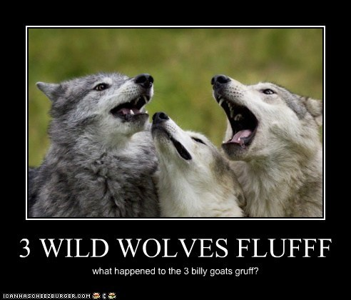 3 WILD WOLVES FLUFFF what happened to the 3 billy goats gruff?