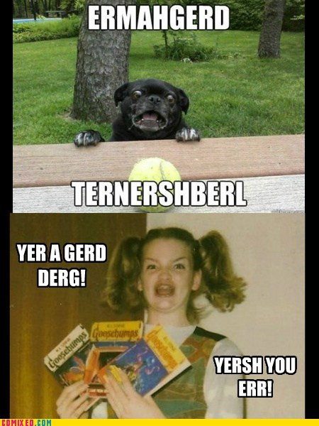 berks best of week derp Ermahgerd goggie ternershberl - 6306433024