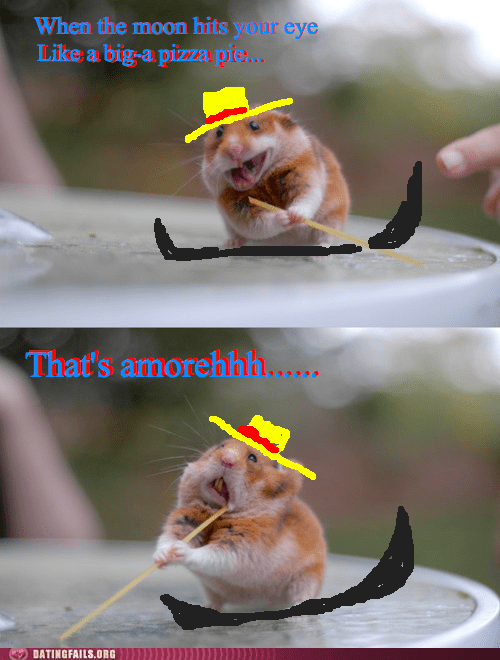 gondola,rodents,thats-amore