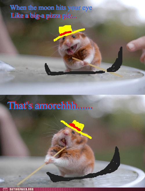 gondola rodents thats-amore - 6306845440