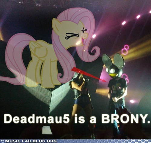 Bronies brony Deadmau5 electronic house my little pony