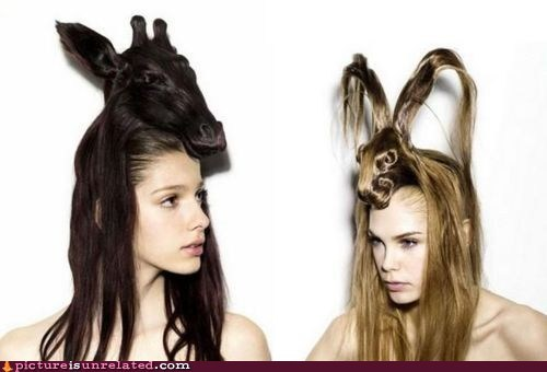 animals awesome hair party animal - 6307536384