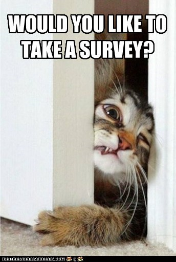 best of week,derp,door to door,kitty,survey