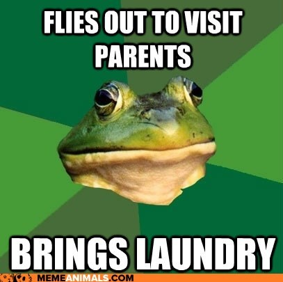 clothing dirty laundry foul bachelor frog frogs laundry lazy Memes parents - 6308641536