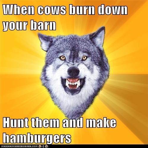 When cows burn down your barn Hunt them and make hamburgers