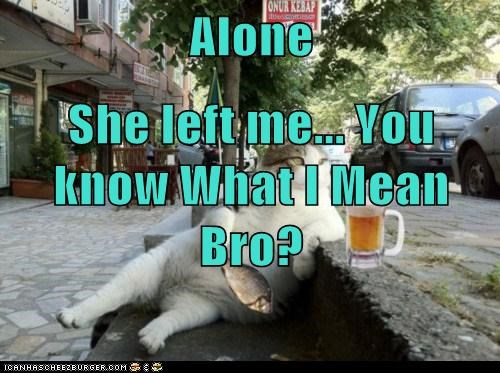 Alone She left me    You know What I Mean Bro? - Lolcats