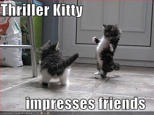 dancing kitten lolcats lolkittehs michael jackson Music thriller undead - 630906112