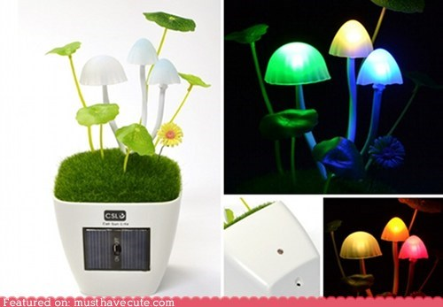 computer decor desk lamp Mushrooms USB