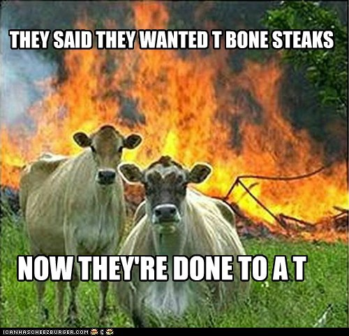 THEY SAID THEY WANTED T BONE STEAKS NOW THEY'RE DONE TO A T