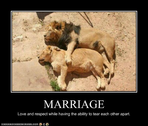MARRIAGE Love and respect while having the ability to tear each other apart.