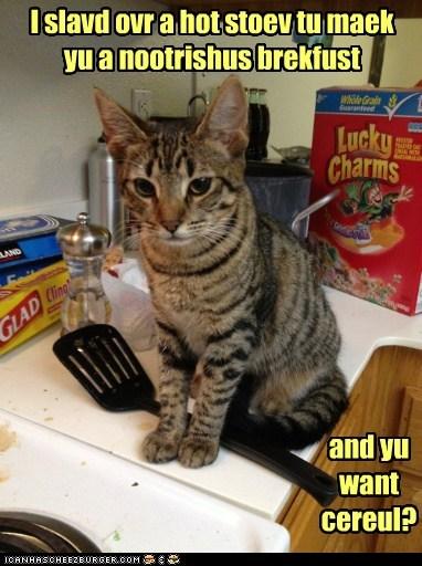 breakfast cereal cook food kitchen noms - 6310507776