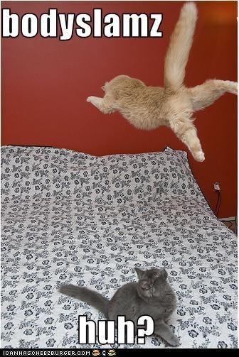 attack bed classic classics dive surprise - 6310730496