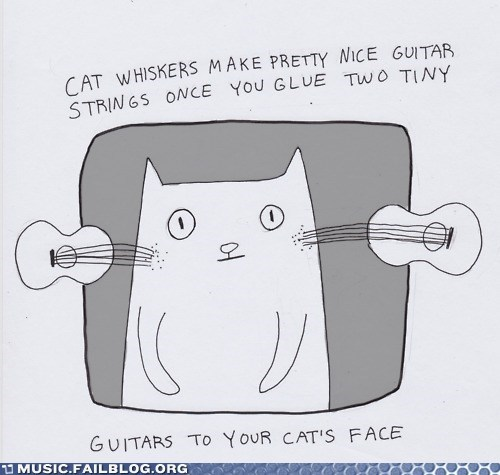 animals,cat,guitar,strings,whiskers