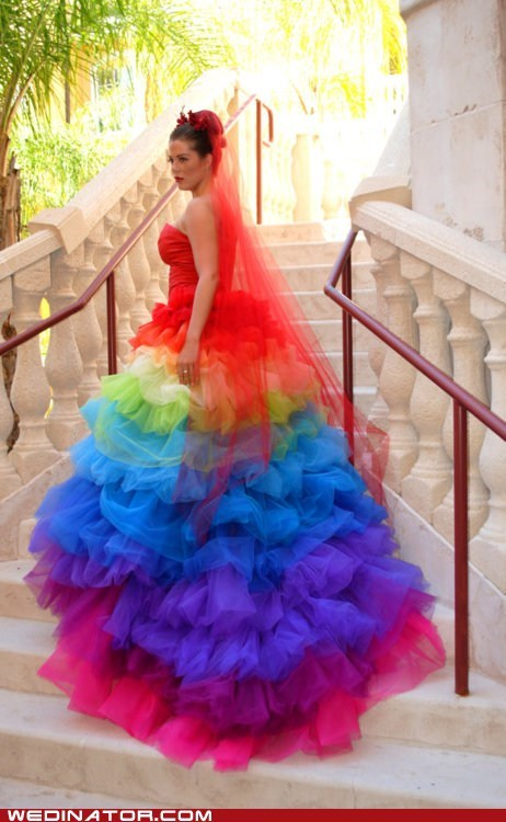funny wedding photos Hall of Fame parrot rainbow wedding couture wedding dress wedding fashion