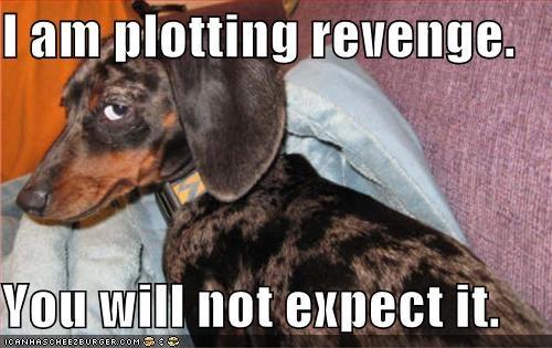 angry evil revenge whatbreed - 631187200
